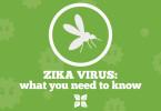 Zika virus_image