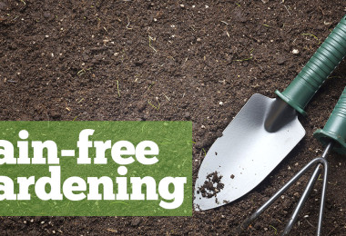 Pain-free gardening