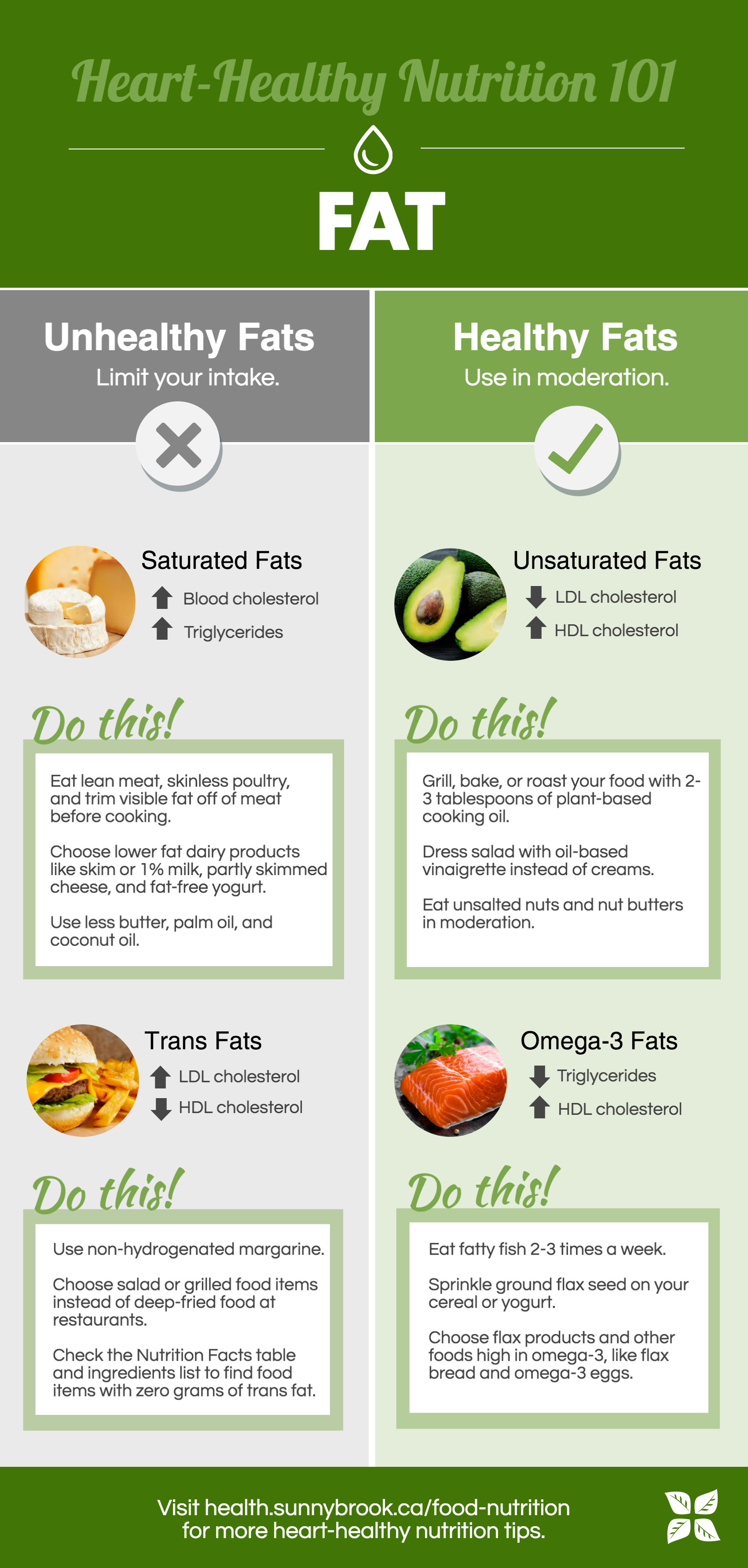 Infographic about types of fat