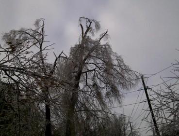 Toronto Ice Storm - December 2013
