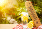 heat wave and lemon water