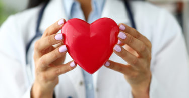 A plastic heart is held by a doctor.