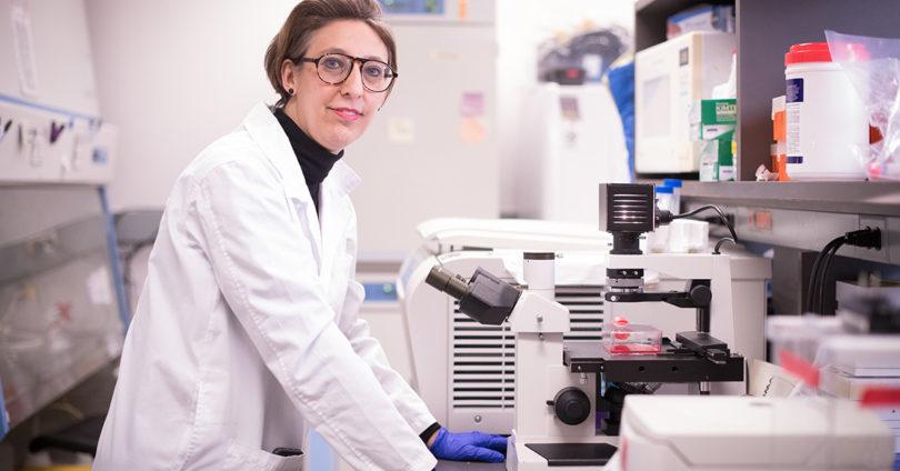 Dr. Samira Mubareka.